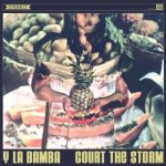 15. Y La Bamba - Court The Storm