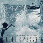 32. Cold Specks - I Predict A Graceful Explosion