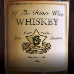31. The Spin Doctors - If the River Was Whiskey